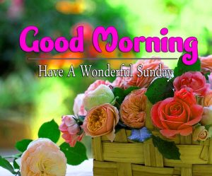 Latest Good Morning Sunday Pics Wallpaper