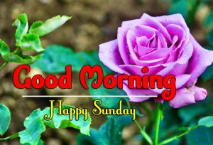Latest Good Morning Sunday Wallpaper Images