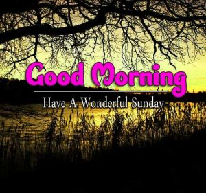 Latest Good Morning Sunday Wallpaper Pics