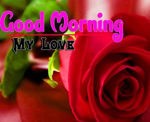 Latest Good Morning Wallpaper Free