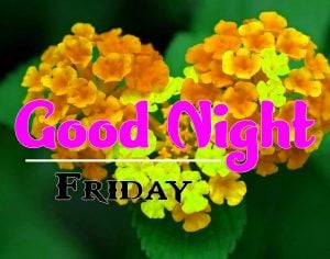 Latest Good Night Friday Images Wallpaper