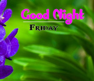 Latest Good Night Friday Pics Images