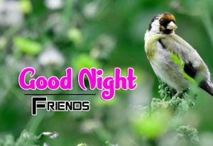 Latest Good Night Images For Friends Download