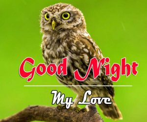 Latest Good Night Images For Friends Images Free