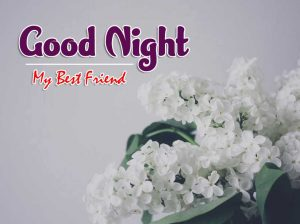 Latest Good Night Images For Friends Pics