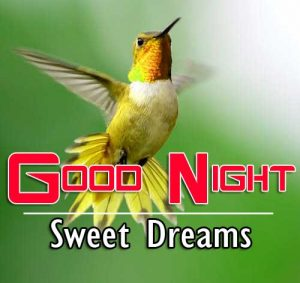 Latest Good Night Images For Friends Pics Free Download