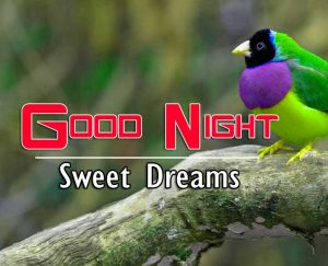 Latest Good Night Images For Friends Wallpaper