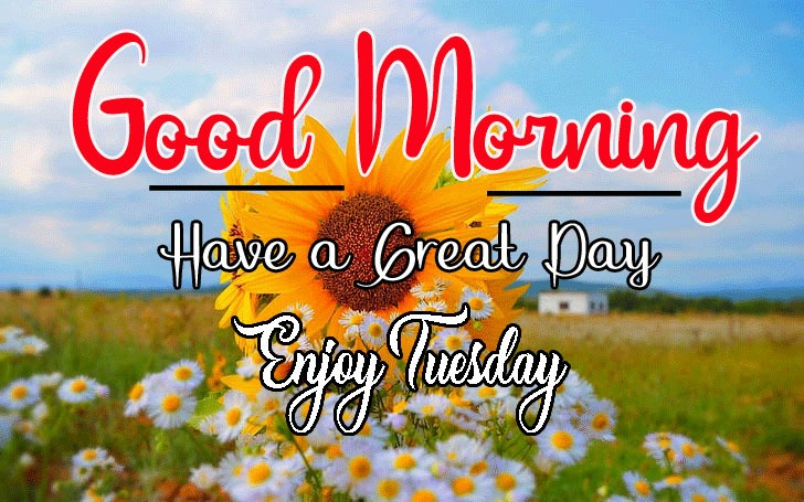 Latest Nice Good Morning Images pictures for download