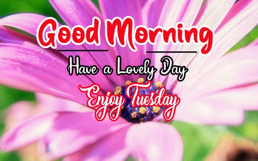 Latest Nice Good Morning Images pictures for facebook