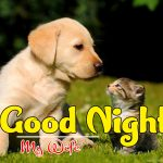 Puppy Love Couple Free Good Night Images Pics Download