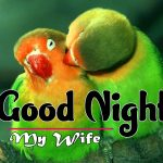 Best 1080p Love Couple Free Good Night Images Pics Download