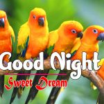 1080p Love Couple Free Good Night Images Wallpaper Download