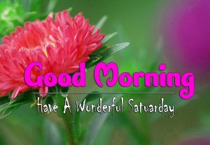 Most Latest Good Morning Saturday Wallpaper Hd