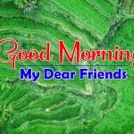 Nature Best Good Morning Images Free Download