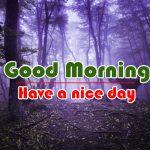 Nature Best Good Morning Wallpaper