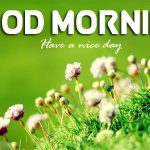 Nature Free Good Mornign Images Download