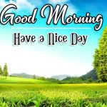 Nature Latest Good Morning Images For Brother