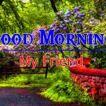 Nature Latest Good Morning Images For Lover