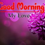 Nature Latest Good Morning Images For Wife