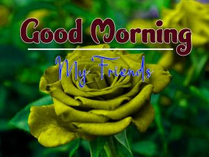 New  Good Morning Monday Hd Free Images