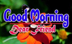 New Best Good Morning For Whatsapp photo Pics