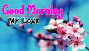 New Good Morning For Facebook Images Photo