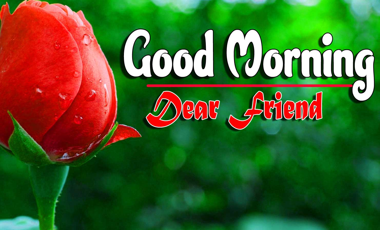 New Good Morning For Facebook Pics