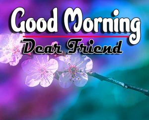 New Good Morning For Whatsapp Free Images