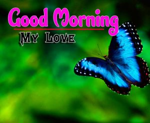 New Good Morning For Whatsapp Images Photo