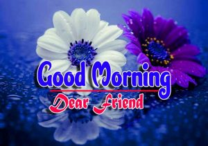 New Good Morning For Whatsapp Wallpaper Download