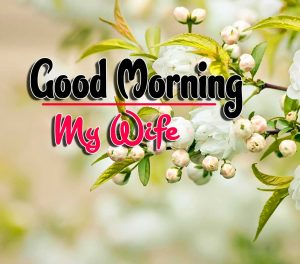 New Good Morning For Whatsapp Wallpaper Pictures