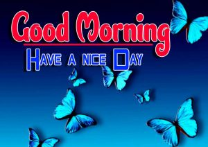 New Good Morning Free Hd Images