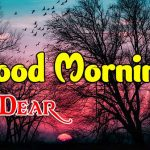 New Good Morning Images photo pics hd