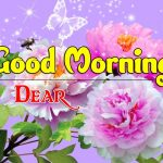 New Good Morning Images pictures free hd
