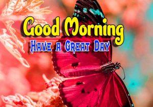New Good Morning Images Wallpaper