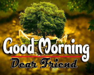 New Good Morning Pictures