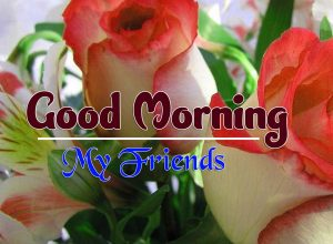 New Good Morning Saturday Free Images