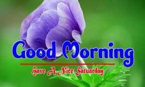 New Good Morning Saturday Pics