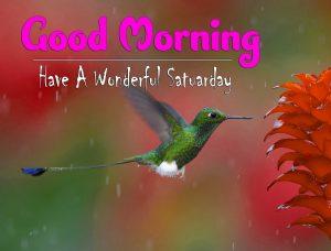 New Good Morning Saturday Wallpaper Hd