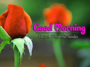 New Good Morning Sunday Pics