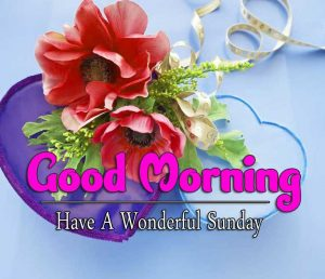 New Good Morning Sunday Wallpaper Pics