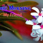 New Good Morning Wallpaper Download