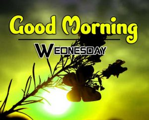 New Good Morning Wednesday Pics