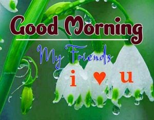 New Good Morning Wednesday Pics Download