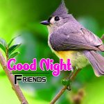 185+ Good Night Images HD For Friends