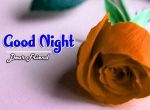 New Good Night Images For Friends Images Free