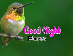 New Good Night Images For Friends Photo Pics