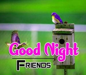 New Good Night Images For Friends Pics