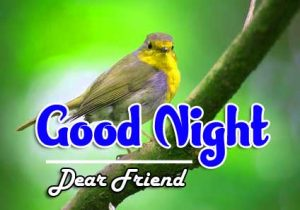 New Good Night Images For Friends Pictures