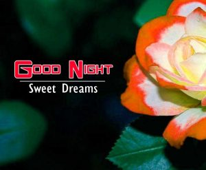 New Good Night Images For Friends Wallpaper